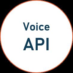 Voice-API