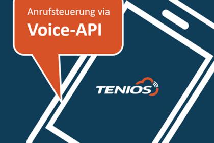 Anrufsteuerung via Voice-API