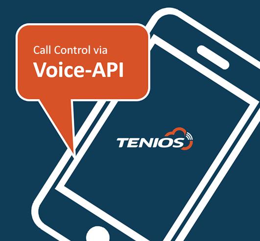 voice api call control